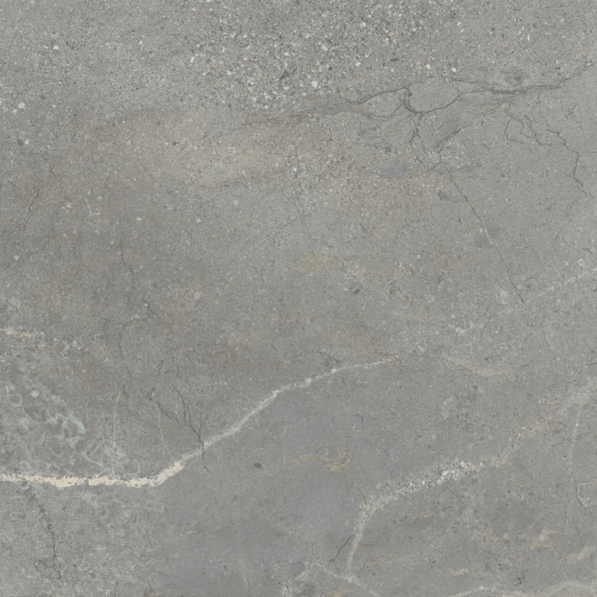 AB Regenstone Grey Nat Rect 600x1200mm_Stiles_Product_Image