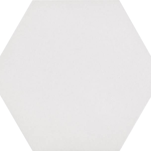 Codicer Hexagon Basic White Porcelain 220x250mm_Stiles_Product_Image