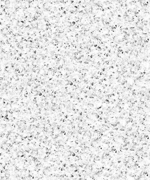 TB Olivian White 2cm Paver 600x1200mm_Stiles_Product_Image2